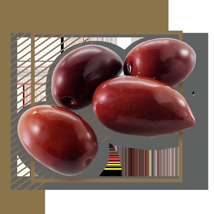 kalamon-olives-pr