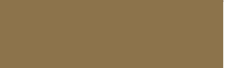 nafplion-negaritikes-olives-tp